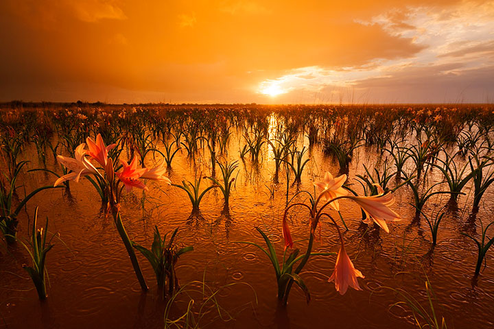 Most Beautiful Photographs To Reveal The Beautiful Namibian Desert-43