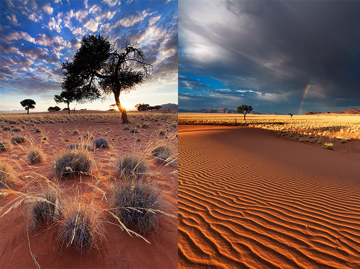Most Beautiful Photographs To Reveal The Beautiful Namibian Desert-5