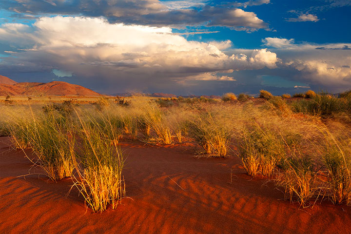 Most Beautiful Photographs To Reveal The Beautiful Namibian Desert-8
