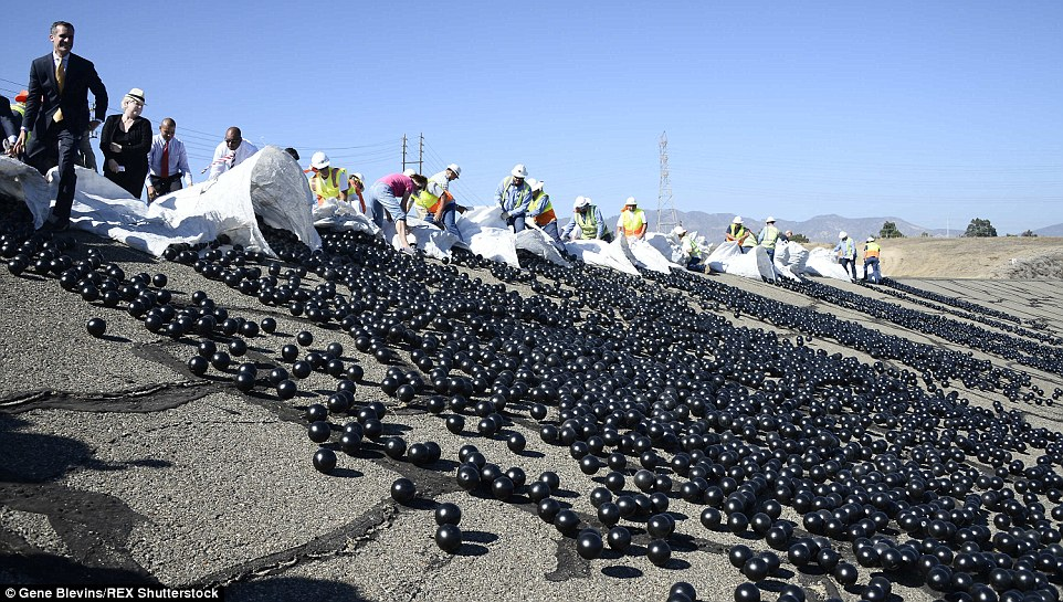 See How 96MILLION Plastic Balls Would Protect LA From Drought-2