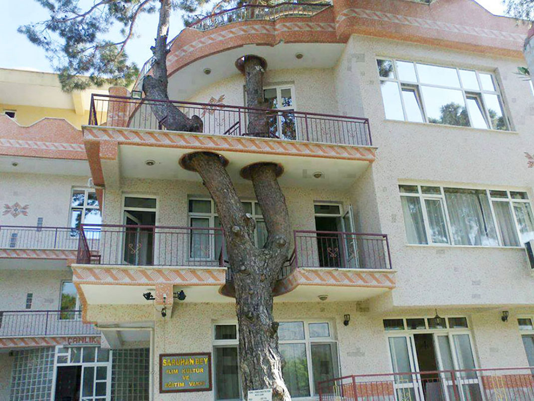 20-Unusual-Buildings-That-Prove-How-Man-and-Nature-Can-Peacefully-Co-exist-15