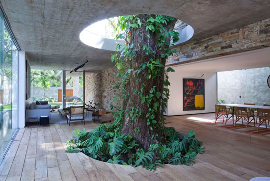 20-Unusual-Buildings-That-Prove-How-Man-and-Nature-Can-Peacefully-Co-exist-16