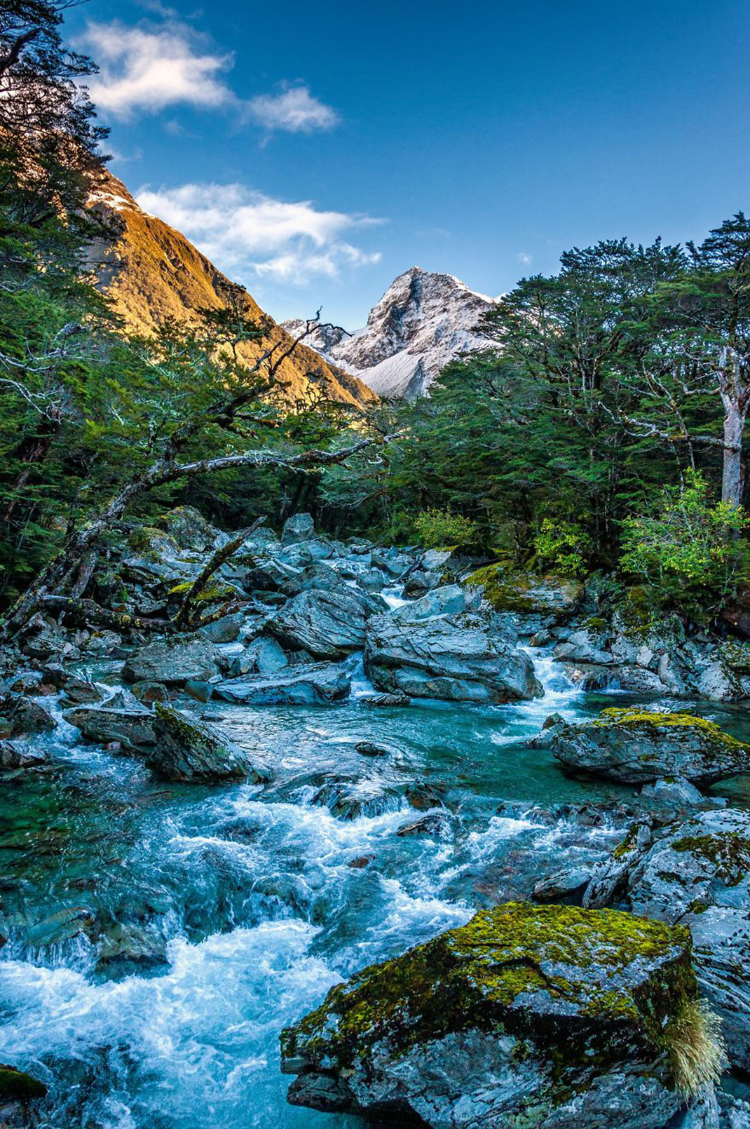 27 Photographs That Reveal Extraordinary Beauty Of New Zealand - photo#41
