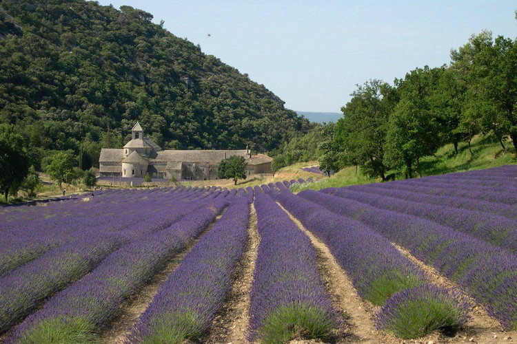 Top 20 Most Beautiful Natural Tourist Attractions in France-3