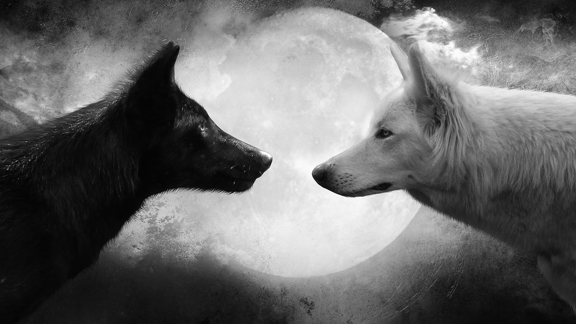 Cool Black And White Wallpapers Resolution Desktop