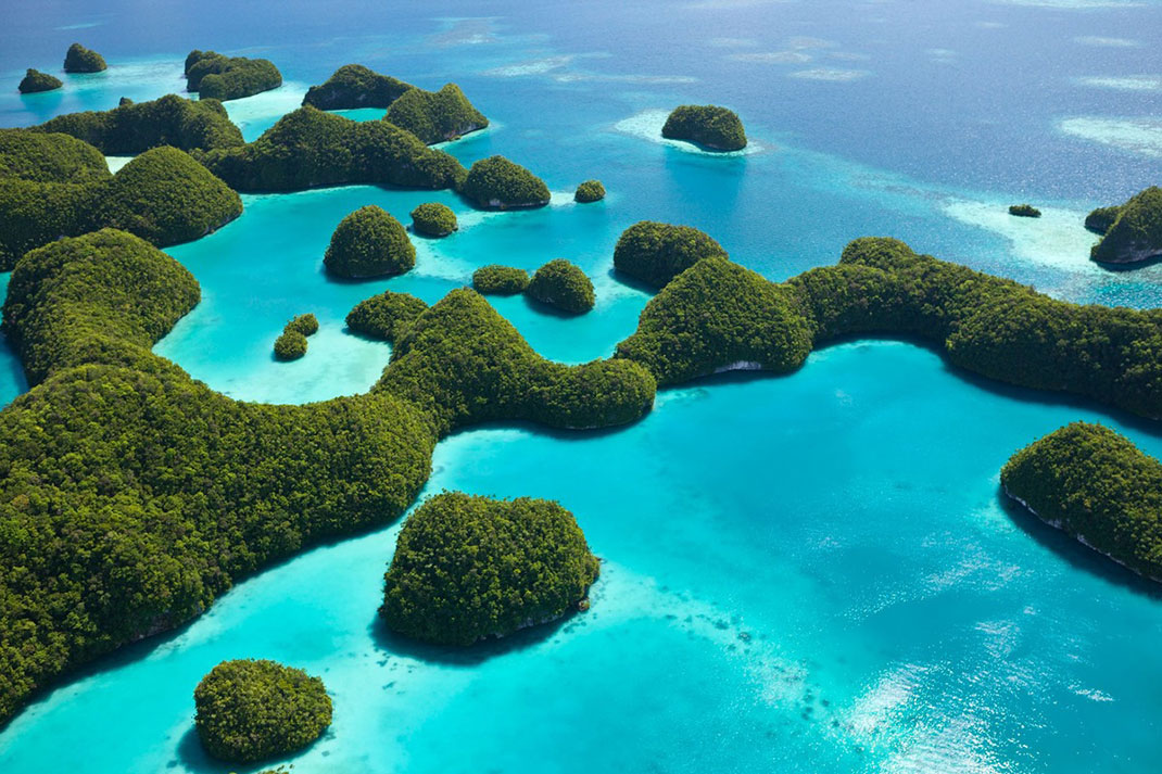 Palau islands-Discover This Gigantic Marine Sanctuary Where Wildlife Is Flourishing Away From Human Activity-
