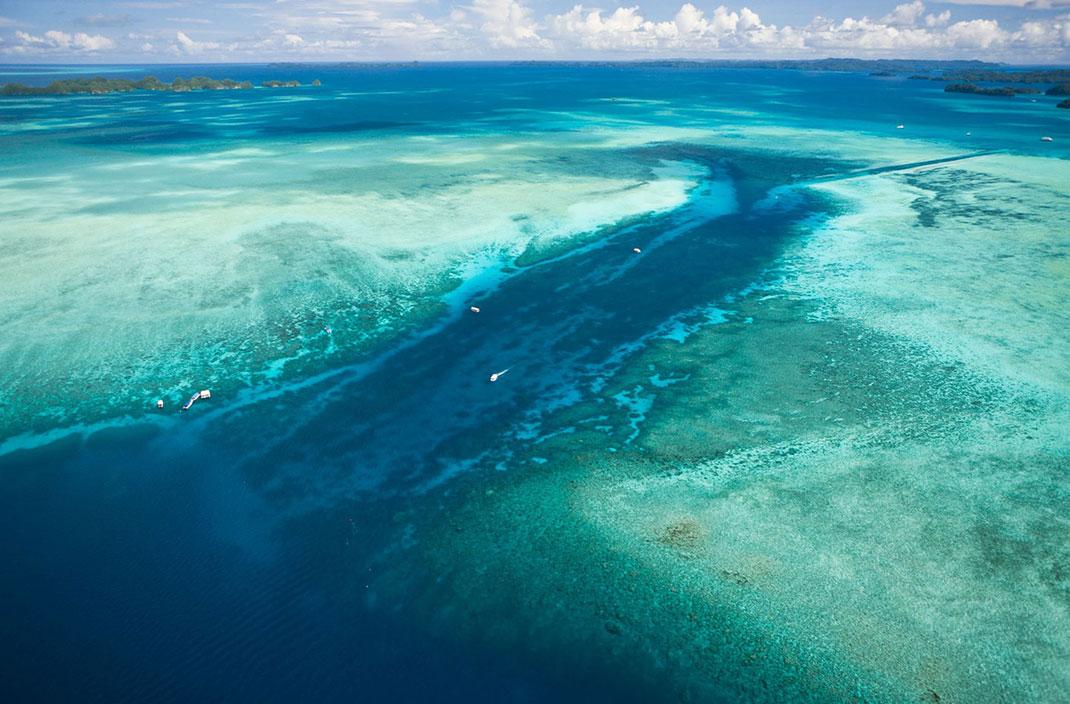 Palau islands-Discover This Gigantic Marine Sanctuary Where Wildlife Is Flourishing Away From Human Activity-4