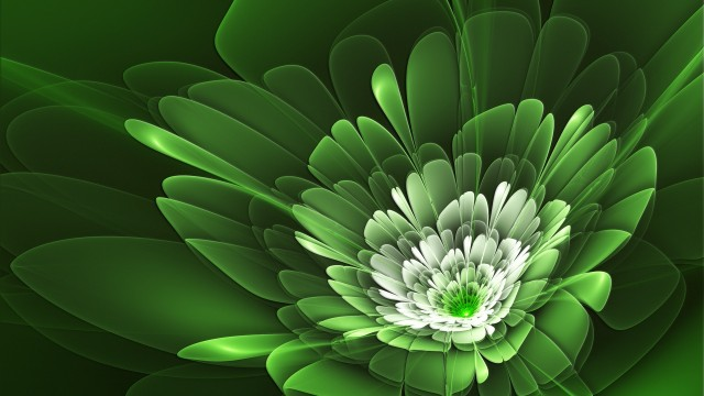 Green Wallpaper 14