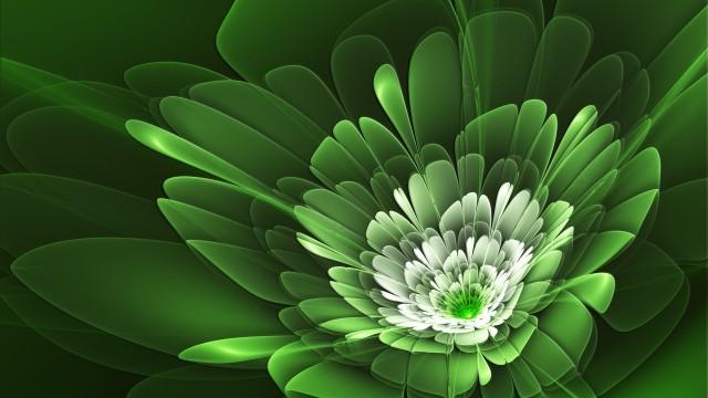 خلفية خضراء عالية الوضوح 34259