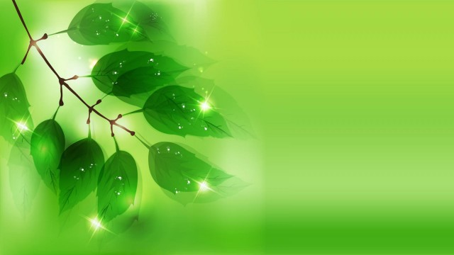 Green Wallpaper 19
