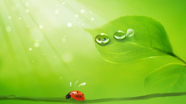 Green Wallpaper 29