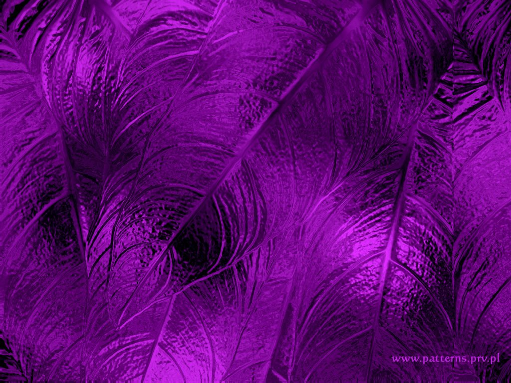 HD Purple Wallpaper Image To Use As Background 24