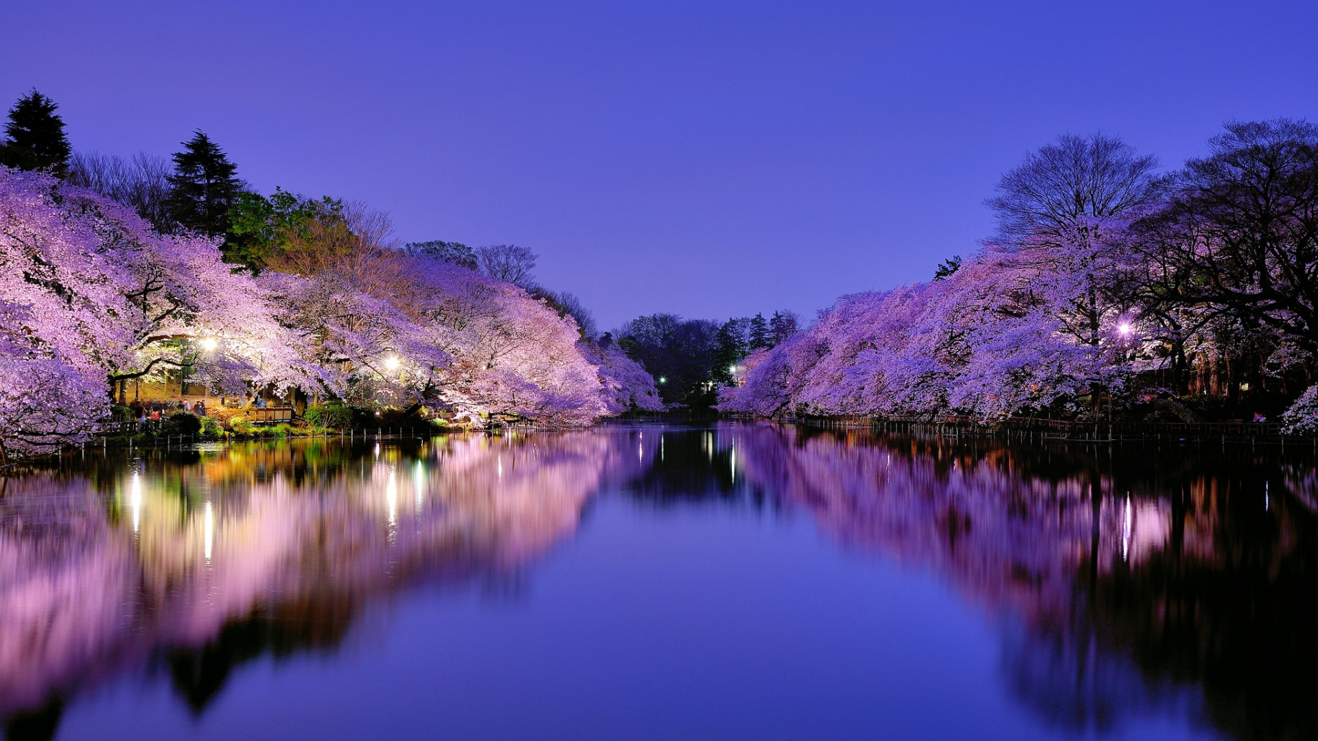 38 beautiful japan wallpapers the land of rising sun for Immagini 1920x1080