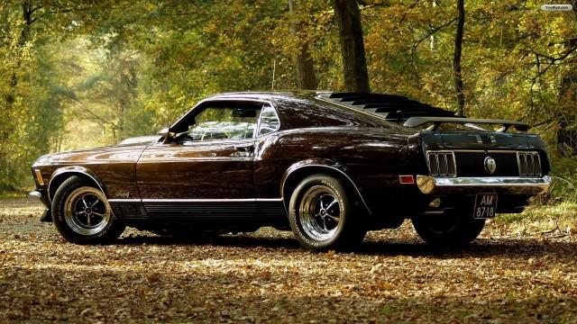 Mustang wallpaper 19