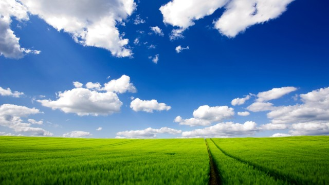 Windows XP wallpaper 16