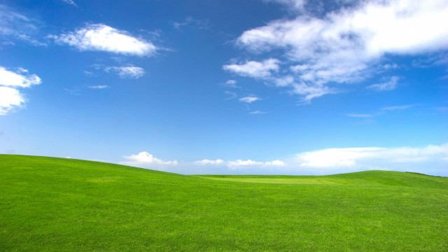Windows XP wallpaper 21