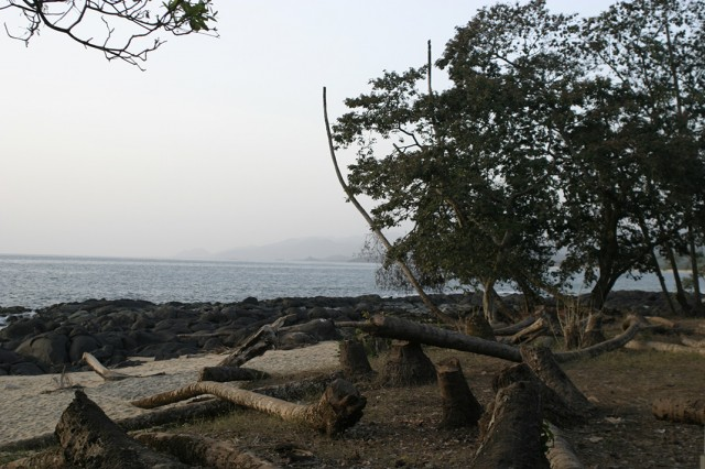 Contemplate The Rich Landscape Of Sierra Leone, This Beautiful Territory Of West Africa--22