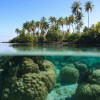 5 Breathtaking Tropical Islands You Would Love To Visit