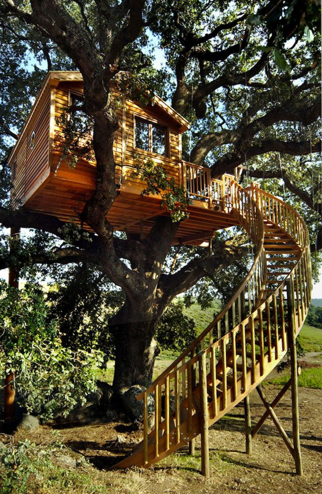 Blue Suit: A Beautiful Cabin Nestled In Trees In The Heart Of A Lavender Field--2