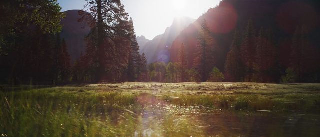 The Different Landscapes Of California That Would Transport You To Another World--5