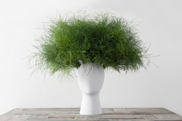 These Head-Shaped Vases Transform Your Floral Arrangements Into Majestic Wigs--6