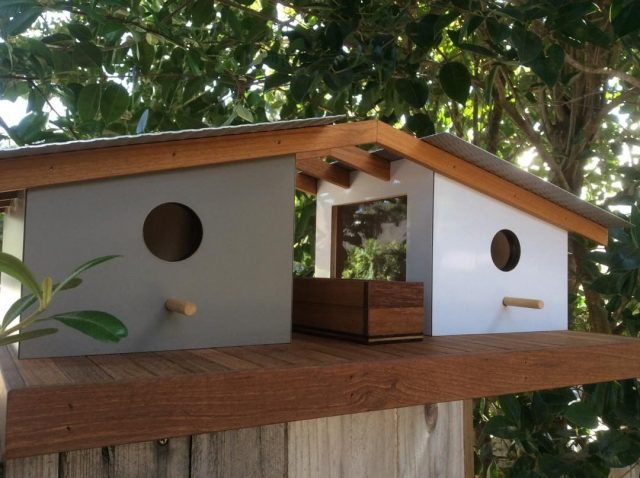 Beautiful Bird Homes 5