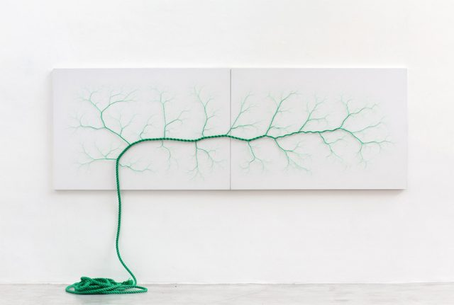 Janaina Mello Landini's Amazing Rope Artworks (gallery)--2