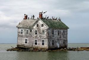Holland Island in the Chesapeake Bay.