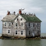 Holland Island in the Chesapeake Bay.