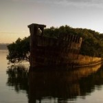 The remains of the SS Ayrfield Australia in Homebush Bay.