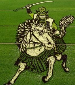 Figure 1: A Rice Field With A Samurai Image