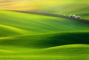 The Most Beautiful Landscape Photography