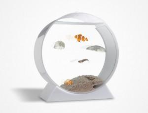 Circle shape aquarium