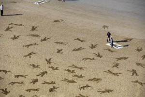 9000 Human Silhouettes Drawn On The Normandy Beaches To Promote Peace 12