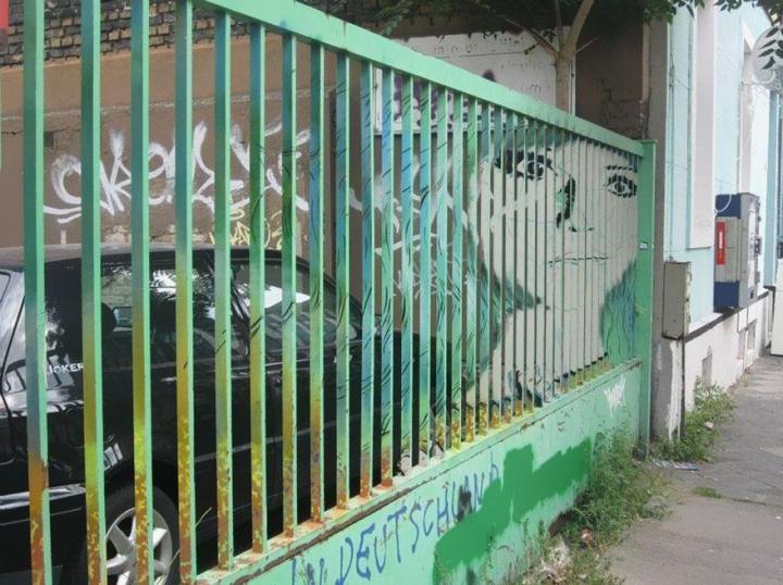 Zebrating Hidden Railing Urban Street Art 111