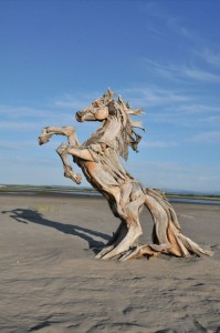 Sea horse-Jeffro makes impressive sculptures made only with wood-1