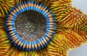 Stunning Nature Inspired Sculptures Made Only Using Pencils-11