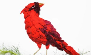 Beautiful Multicolored Birds Made From Hundreds Of Flower Petals-11