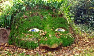 Weird world gardens