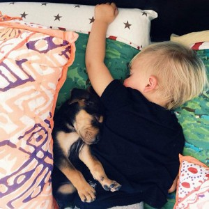 Jessica A stunning Series Of Photograph Immortalizes The Friendship Between A Baby And A Puppy-16