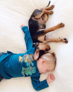 Jessica A stunning Series Of Photograph Immortalizes The Friendship Between A Baby And A Puppy-3