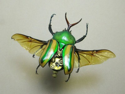 Discover The Impressive Bionic Insects From Insect Labs-