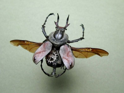 Discover The Impressive Bionic Insects From Insect Labs-2