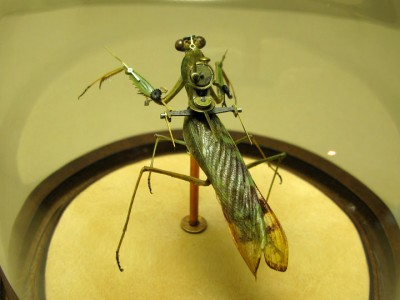 Discover The Impressive Bionic Insects From Insect Labs-21