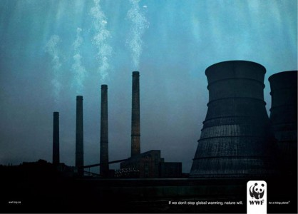 Support WWF sooner than later-11