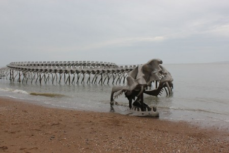 A Giant Aluminium Made Skeleton Of Serpent On the Beach of Loire, France-3