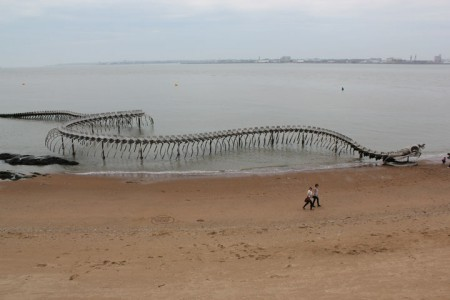 A Giant Aluminium Made Skeleton Of Serpent On the Beach of Loire, France-8