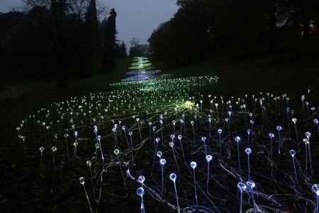 Enjoy A Walk Through The Lavish Garden Lights of Bruce-2