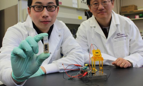 Within three years batteries May Be Powered By Sugar-1
