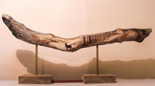 PYROGRAPHY: Impressive Portraits Of Nature Realized By The Careful Burning Of Wood -16